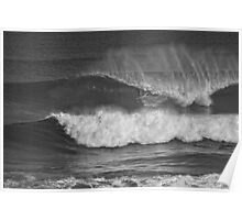 slotted in mono Poster