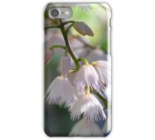blueberry ash iPhone Case/Skin