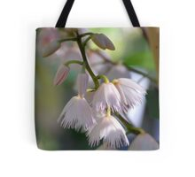 blueberry ash Tote Bag