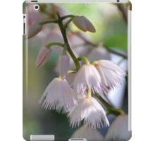 blueberry ash iPad Case/Skin