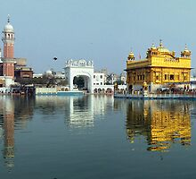 The Golden Temple Wide Shot by Hardeep Singh