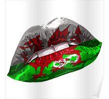 Welsh Dragon Graphic Design Poster
