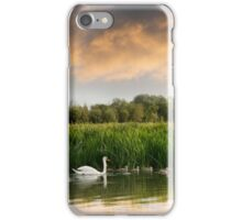 Swan and cygnets on the Isis (River Thames) iPhone Case/Skin