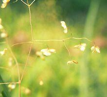 grass IV by Floralynne