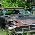 Rusty Old T - Bird by R.E Smith
