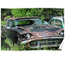 Rusty Old T - Bird Poster