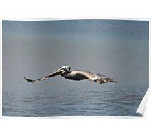 """"""" Marsh Flight """" Poster"""