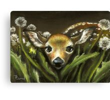 Peek-a-boo! little fawn by Tanya Bond Canvas Print