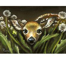 Peek-a-boo! little fawn by Tanya Bond Photographic Print