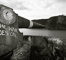 The War Goes On. II by Stephen Rowsell
