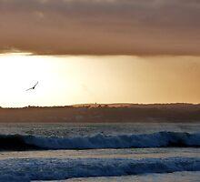 Sunset at Marazion, Cornwall by Victoria  Jarrett