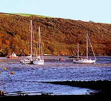 River Dart, Dittisham. by Andrew  Bailey