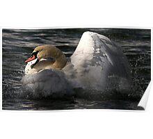 Raging Swan Poster