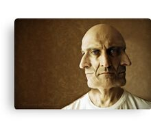 the many faces of... Canvas Print