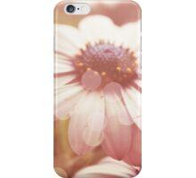 Dreamy Summer Daisies iPhone Case/Skin