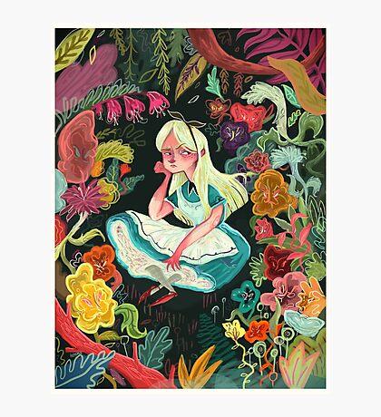 Alice in Wonder Photographic Print