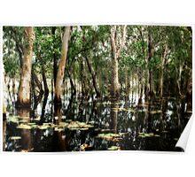 Wet Lands Poster