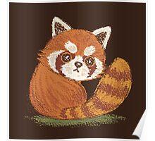 Red Panda look back Poster