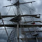 Stormy weather.....reef the topsails.......!   by Roy  Massicks