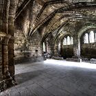 Kirkstall Abbey #04 by shutterjunkie