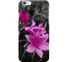 Pink Day Lily iPhone Case/Skin