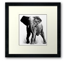Taking all comers Framed Print