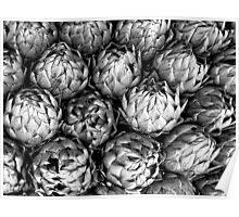 Artichokes Have Lovely Lines! Poster