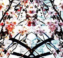 Colourful shading II by Tanja Katharina Klesse