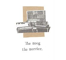 The Moog The Merrier Photographic Print