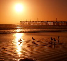 Sunset at Pismo Beach by the57man