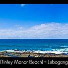 Dolphin Beach by Lebogang Manganye