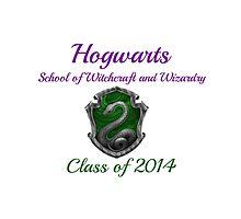 Hogwarts Slytherin Class of 2014 by etaworks