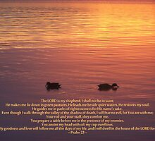 ~ Psalm 23 ~ by Donna Keevers Driver