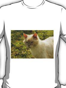 Farm Kitty T-Shirt