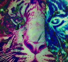 Tiger_8598 by AnkhaDesh
