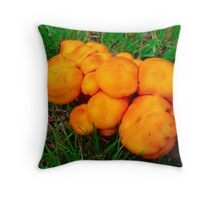 Give Me Some Room! Throw Pillow