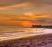 Ventura Beach by Cheryl  Lunde