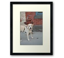 To pee or not to pee? Framed Print