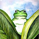 Peeping Frog  by Linda Callaghan