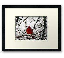 Fire & Ice Framed Print