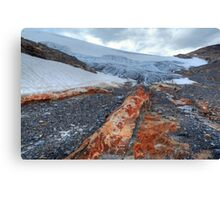 Wapta icefield Canvas Print