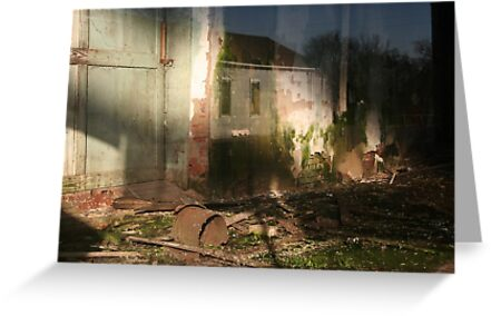 Reflections on Rubble by Peter Baglia