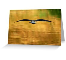 Full Flight Greeting Card