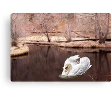 Graceful Canvas Print