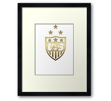 USA- World Cup Champs  Framed Print