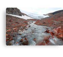 Glacier outflow Canvas Print