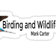 Birding and Wildlife Logo Sticker