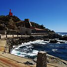 Bay of Quintay - Chile by Daidalos