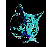 Electric Blue Tabby Face Photographic Print