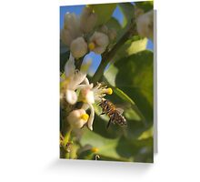 nectar fiend Greeting Card